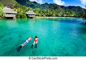 pareja, coral, joven, agua, limpio, encima, snorkeling