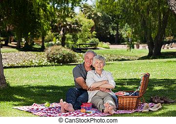 pareja edad avanzada, picnicking, en, el, g
