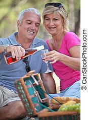 pareja, el gozar, picnic, juntos