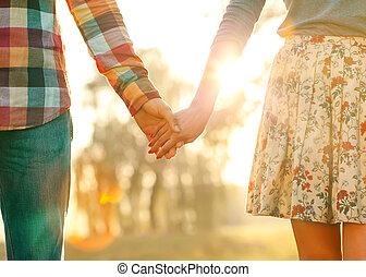 pareja joven, enamorado, ambulante, en, el, otoño, parque que tiene manos, lo