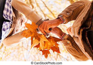 pareja, tenencia, otoño sale