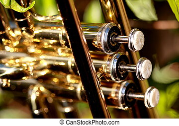 parel, kleppen, van, een, trompet