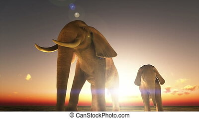 parent and child elephants