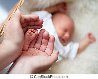 parent, bébé, garder, nouveau né, tendresse, soigneusement, pied