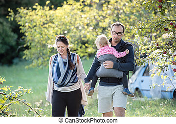 Parents carrying their children in carriers. Walk in nature.