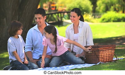 Parents on a picnic with children