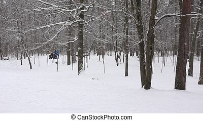 Parents with child and stroller going for walk in park winter snow fall.