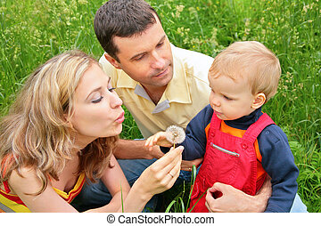 Parents with child sit in grass and blow on dandelion