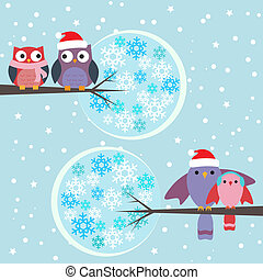 pares, corujas, inverno, pássaros