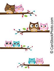 pares, de, corujas, sentando, ligado, ramos