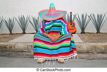 paresseux, mexicain, asseoir, guitare, petit somme, agave, ...