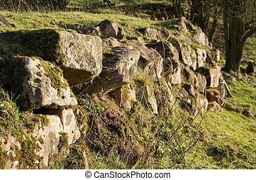 parete, campo, confine, inglese