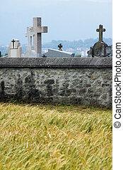 parete, cemeter, pietra, campo frumento