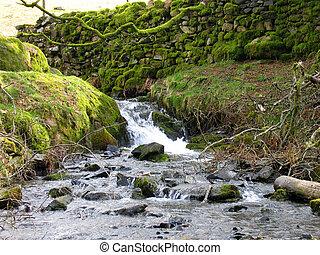 parete, pietra, cascata