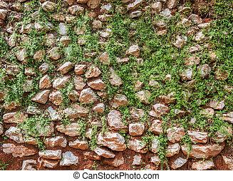 parete, pietra, foglie, fondo, sporcizia