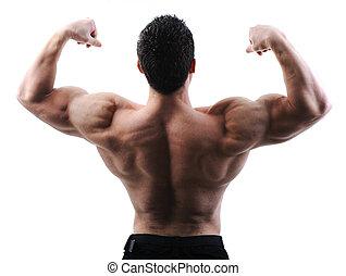 parfait, corps, impressionnant, -, culturiste, poser, mâle