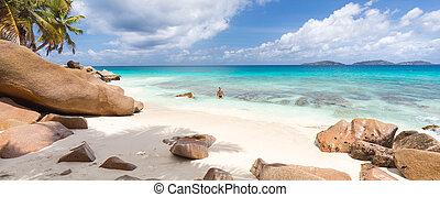 parfait, image, patates, île, digue, la, apprécier, plage, anse, seychelles., homme