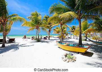 parfait, plage tropicale
