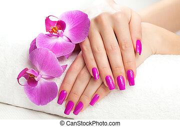 parfumé, towel., femelle transmet, spa, orchidée