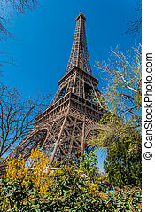parigi, città, torre, eiffel, francia