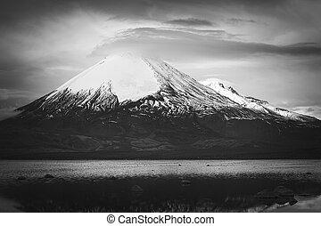 parinacota, volcán, y, chungara, lago, en, chile norteño