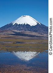 Parinacota Volcano - Snow capped Parinacota Volcano, 6,324m...