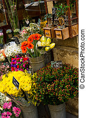 Paris Flower Shop - Colorful variety of flowers on display...