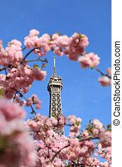 parisiense, detalle