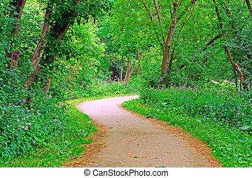 park, ścieżka
