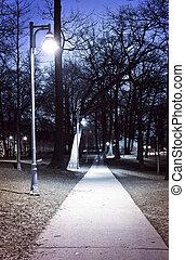 park, ścieżka, w nocy