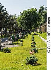 park, aleja