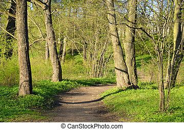 Park at spring.