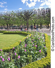 Park at the walls of Notre Dame de Paris in spring