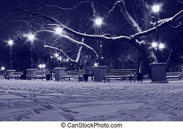 park at winter night
