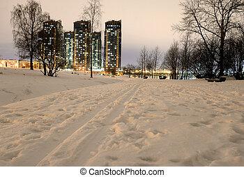 Park at winter night. - Park at winter night on the...