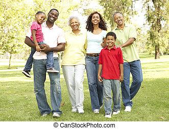 park, ausgedehnt, gruppe, familie portrait