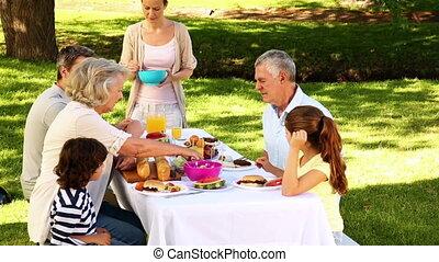 park, barbecue, hebben, gezin, vrolijke