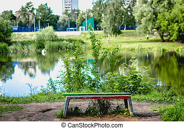 Park Bench by the pond at summer time.