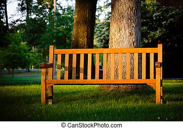 Park bench highlighted by sun - Park bench highlight by late...