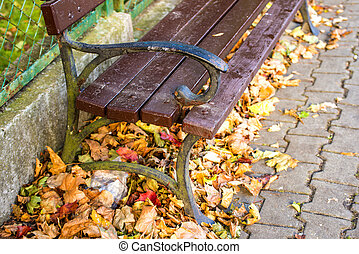 park bench in a city in autumnal sun