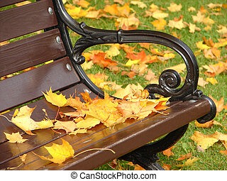 Yellow leaves lie on a bench in park in the autumn