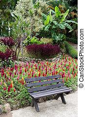 Park bench in garden