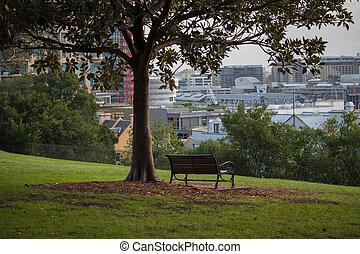 Park bench under a tree