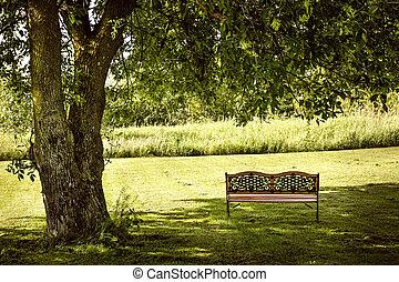 Park bench under tree - Bench under lush shady tree in...
