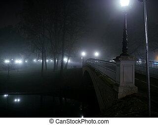 Park bridge in foggy winter night