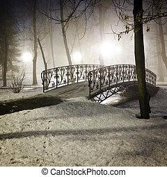 Park bridge in winter