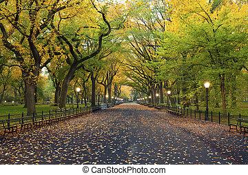 park., central