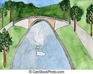 park., cisne, fuente, dibujo, niño