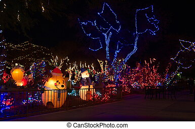 Park Decorated for Christmas at Night