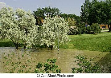 Park flooded